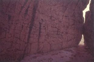 Cleft, Kakadu . 1995-97. Oil on linen, 153x228cm