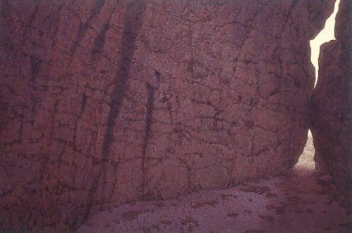 Cleft, Kakadu . 1995-97. Oil on linen, 153x228cm