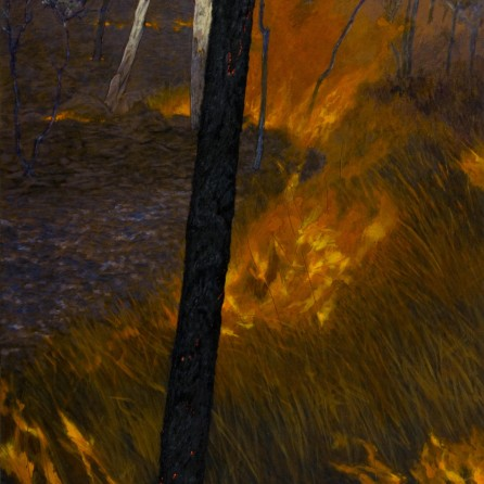 Dark Fireline, 2007 Dimensions: 137x97 cm Acrylic on linen