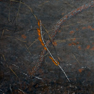 Burning Stick 1, 2007 Dimensions: 91x76 cm Acrylic on linen