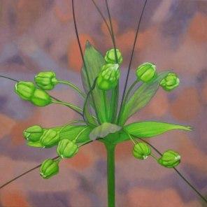 January – Tacca 1, [ Tacca leontopetaloides ], 70x90cm,oil on cotton.