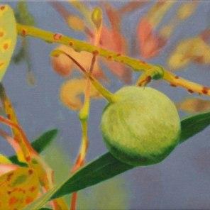 February – Grevillea nut 1, [ Grevillea decurrens ], 28x38cm, oil on cotton