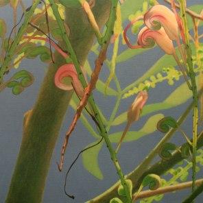 March – Grevillea flowers 2, [ Grevillea decurrens ], 80x90cm, oil on linen