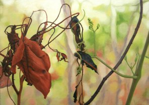 November – scorched leaves and new vine shoot 1, [Cocky apple - Planchonia careya , and Wild Grape – Ampelocissus acetosa ], 50x70cm, oil on linen