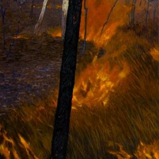 Dark Fireline, 2007 Dimensions: 137x97 cm Acrylic on linen