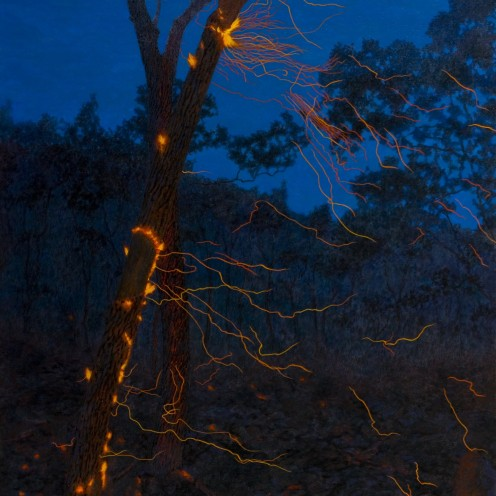Two trees and drifting sparks, 2007 Dimensions: 193x122 cm Acrylic on linen